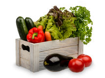 Verse ingemaakte sla, munt, peterselie, wortelen, paprika en courgette in houten geïsoleerde doos Royalty-vrije Stock Foto's