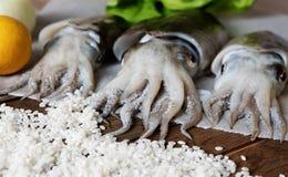 Verse inktvissen met groenten Stock Foto's