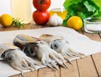 Verse inktvissen met groenten Royalty-vrije Stock Afbeeldingen