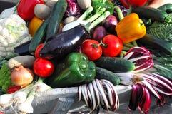 Verse Italiaanse groenten Royalty-vrije Stock Foto