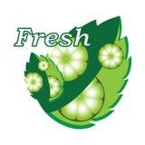 Verse kalk en groene muntbladeren Stock Afbeelding