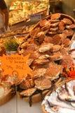 Verse kammosselen of coquilles in hun shells Royalty-vrije Stock Afbeelding