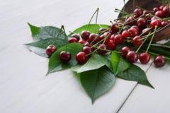 Verse kersen met groene bladeren op wit rustiek hout Stock Foto