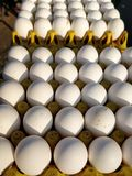 Verse kippeneieren bij Indische Straatmarkt Stock Afbeeldingen