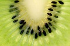Verse kiwi Royalty-vrije Stock Afbeeldingen
