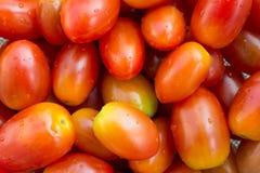 Verse kleine tomaten met dalingen van water Stock Foto's
