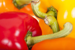 Verse kleurrijke groene paprika's Stock Afbeeldingen