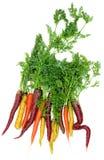 Verse kleurrijke wortelen stock afbeelding