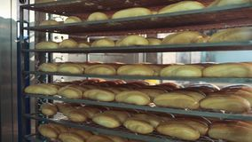 Verse knapperige broodbroden op het koelrek Brood die, productieproces maken stock video