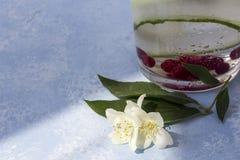 Verse koele detox drank met komkommer, bessen stock fotografie