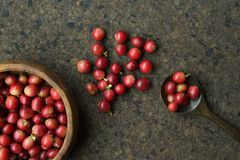 Verse koffiebonen in houten kom Royalty-vrije Stock Foto