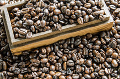 Verse koffiebonen, selectieve nadruk Stock Fotografie