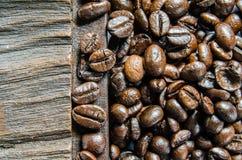 Verse koffiebonen, selectieve nadruk Stock Foto