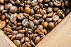 Verse koffiebonen, selectieve nadruk Stock Afbeelding