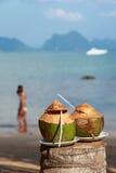 Verse kokosnoot Royalty-vrije Stock Afbeeldingen