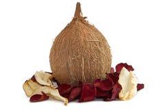 Verse kokosnoot met droge roze bloemblaadjes stock fotografie