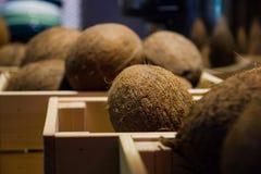 Verse kokosnoten in houten dozen royalty-vrije stock afbeelding