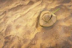 Verse kokosnotencocktail op zand van strand stock foto