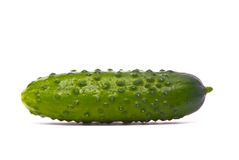 Verse komkommer Stock Afbeelding