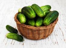 Verse komkommers Royalty-vrije Stock Foto's