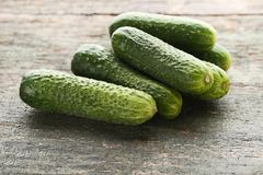 Verse komkommers Stock Fotografie