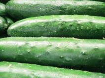 Verse komkommers Stock Foto's