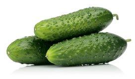 Verse komkommers royalty-vrije stock afbeelding