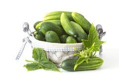 Verse komkommers in een mand Stock Fotografie