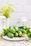 Verse komkommers en ingrediënten voor behoud Royalty-vrije Stock Afbeeldingen