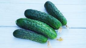 Verse komkommers van de tuin Royalty-vrije Stock Foto