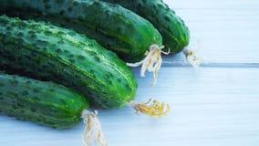 Verse komkommers van de tuin Royalty-vrije Stock Fotografie