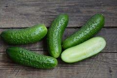 Verse komkommers van een bed Stock Afbeelding