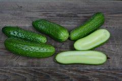 Verse komkommers van een bed Royalty-vrije Stock Afbeeldingen