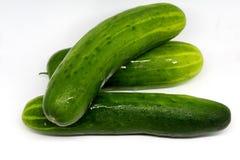 Verse komkommers van Quebec Royalty-vrije Stock Foto's