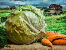 Verse kool en wortelen Stock Foto