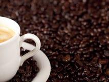 Verse kop van donkere geroosterde koffie Royalty-vrije Stock Fotografie
