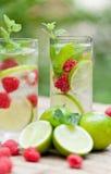 Verse koud drinkt de framboos van de de pepermuntkalk van waterijsblokjes royalty-vrije stock foto