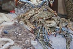 Verse krabben en zeevruchten Royalty-vrije Stock Fotografie