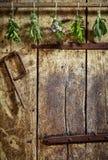 Verse kruiden die op een oude houten deur hangen Stock Foto