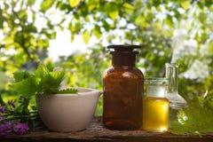 Verse kruiden - Organische essentie, etherische olie stock foto