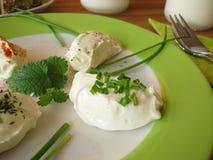 Verse Labneh - Gespannen yoghurt Royalty-vrije Stock Afbeeldingen