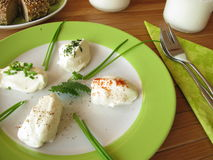 Verse Labneh - Gespannen yoghurt Royalty-vrije Stock Foto