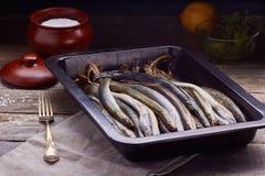 Verse lamprei klaar voor het koken Stock Afbeelding