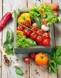 Verse landbouwbedrijfgroenten en kruiden op rustieke achtergrond Royalty-vrije Stock Foto