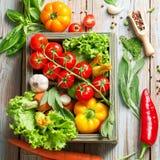 Verse landbouwbedrijfgroenten en kruiden op rustieke achtergrond Stock Afbeelding