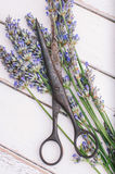 Verse laveder Royalty-vrije Stock Afbeeldingen