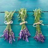 Verse Lavendel Royalty-vrije Stock Afbeeldingen
