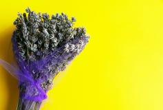 Verse lavendel op yellownachtergrond Stock Foto