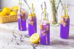 Verse lavendel violette cocktail met citroen en ijs royalty-vrije stock afbeelding