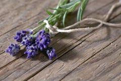 Verse lavendelbloemen op doorstaan hout Stock Afbeeldingen